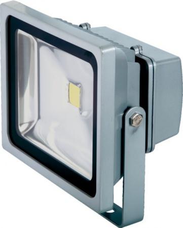 PROJECTEUR ALU LED 220V 30W 2160 LUMENS GRIS